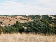 Dunse Ranch